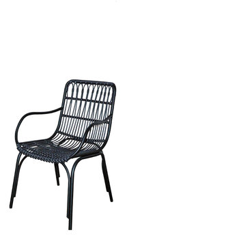 Palm beach city dining armchair